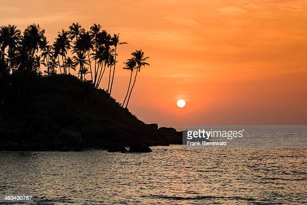 Sunset at Palolem Beach with rocks and palm trees