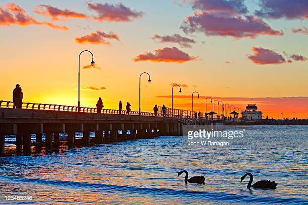 Sunset, at St. Kilda Pier, with swans