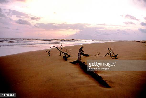 Sunset at the estuary beach near Akassa in Bayelsa State Nigeria The Nun River Estuary is an important nesting site for endangered sea turtles The...