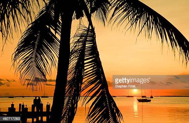 Sunset, Bayside, Key Largo.