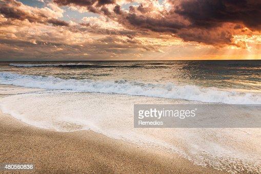 Sunset beach : Stock Photo