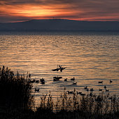 Sunset cloudscape over lake Steinhuder Meer, Germany