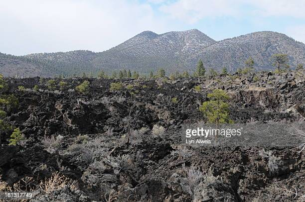 Sunset Crater Volcano National Monument is north of Flagstaff Arizona The volcano erupted sometime between 1040 and 1100 This is a photo of the...