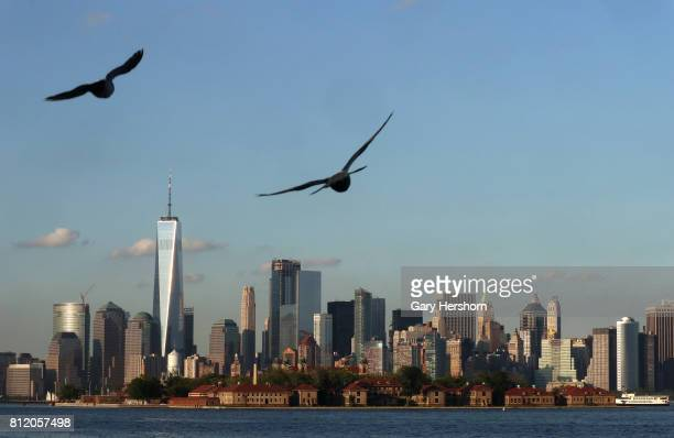Sunset falls on One World Trade Center in New York City as two birds fly above Ellis Island on July 7 as seen from Liberty State Park in Jersey City...