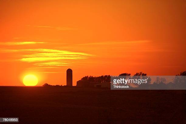 Sunset in rural landscape with silo