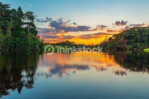 熱帯雨林アマゾン川流域の夕日 : ストックフォト