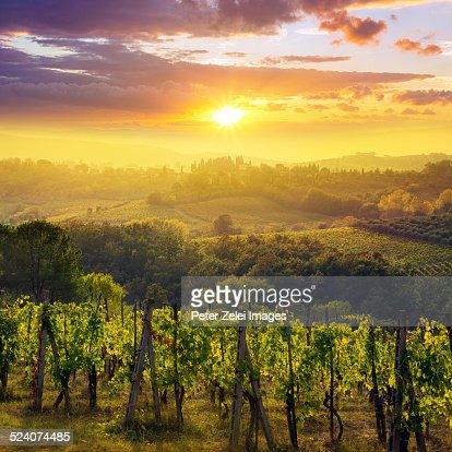 Sunset in Tuscany : Stock Photo