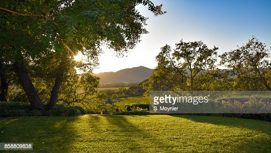 Sunset, Lawn and a view : Stock Photo