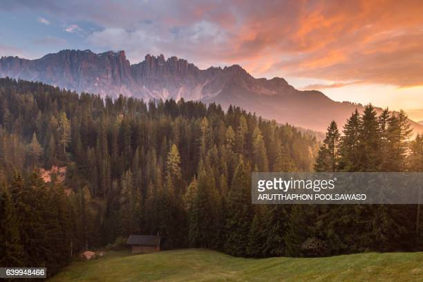 Sunset of alps mountain with pine forest , dolomites Italy , Carezza lake