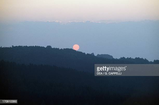 Sunset on Altschonau forest in the Bavarian Forest National Park Bavaria Germany