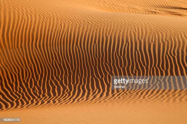 Sunset on sand dunes in Dubai, United Arab Emirates