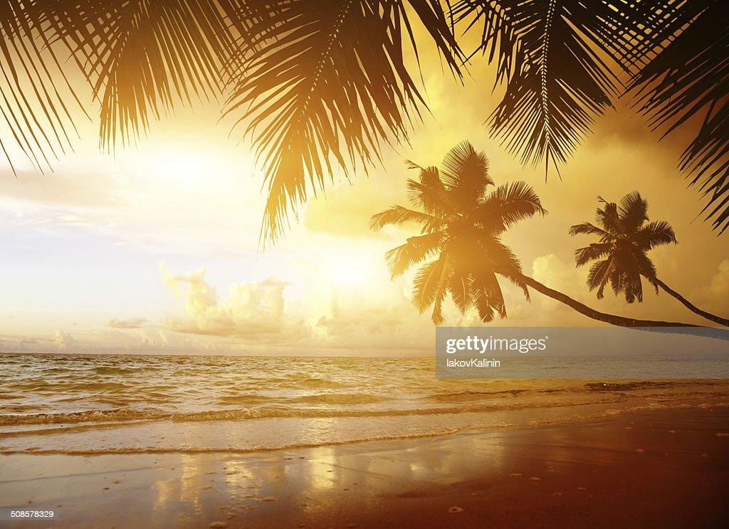 sunset on the beach of caribbean sea : Stock Photo