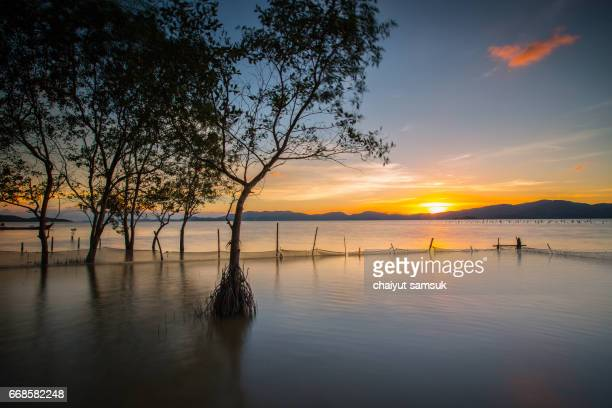 Sunset on the Lake, nature Landscape