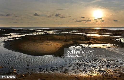 Sunset on the low tide mudflat