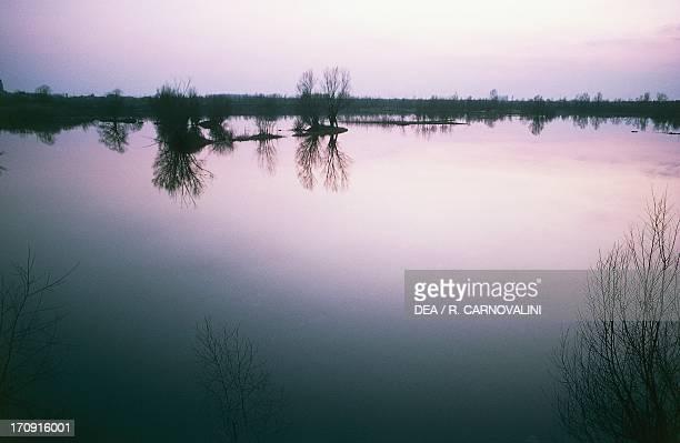 Sunset on the Po delta near Mesola Po Delta Regional Park Ferrara EmiliaRomagna Italy
