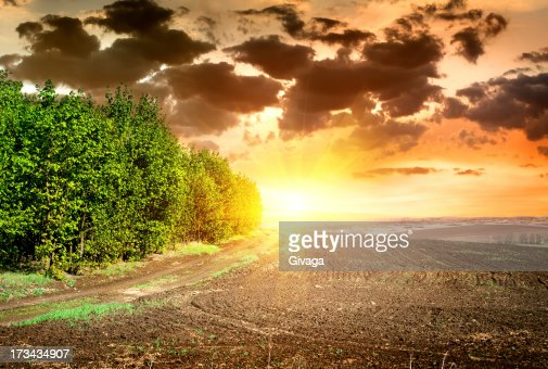 Sunset over black ploughed : Stock Photo