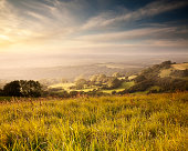 'This is the view west from Eggardon Hill in Dorset, bathed in the pastel light of a beautiful sunset'