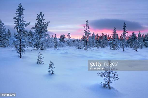 Sunset over Frozen Winter landscape, Lapland, Finland