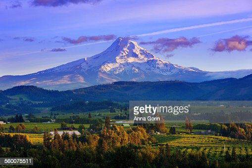 Sunset over Mt Hood and Hood River Valley, Oregon