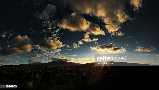 Sunset over rainforest