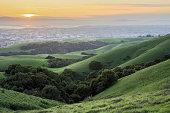 Shot from Garin-Dry Creek Pioneer Regional Parks, San Francisco East Bay, California.