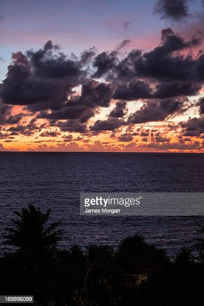 Sunset over sea with clouds and trees silhouetted