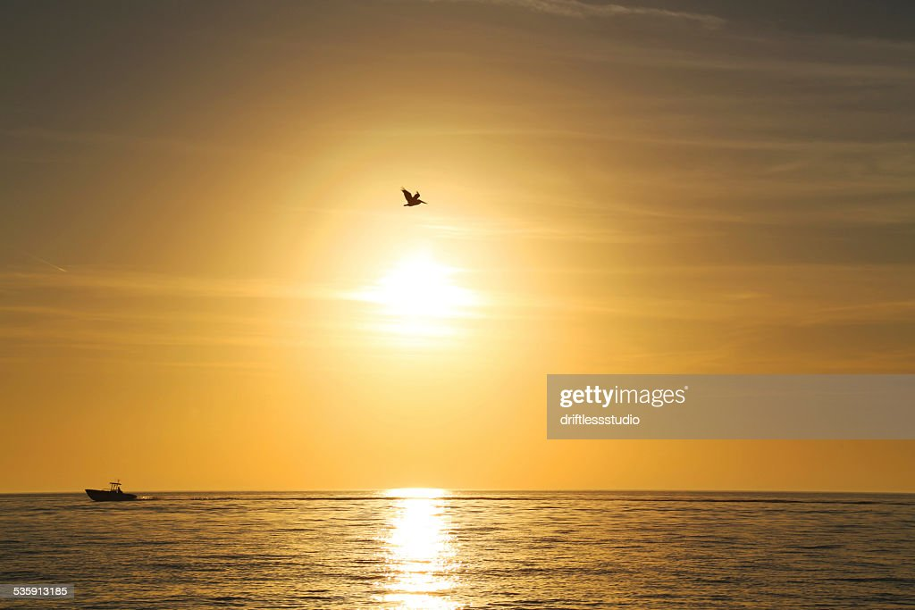 Sunset over the ocean : Stock Photo