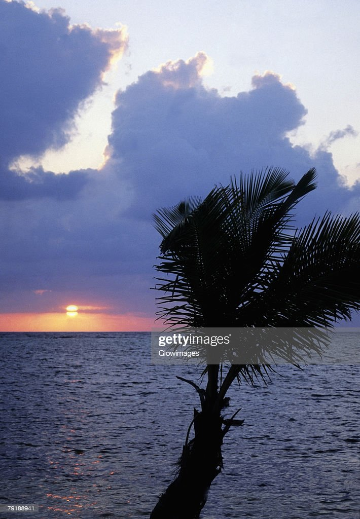 Sunset over the sea, Blackbeard's Caye, Belize : Foto de stock