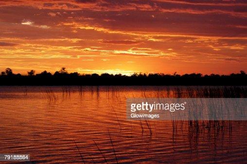 Sunset over the swamp, Okavango Delta, Botswana : Foto de stock