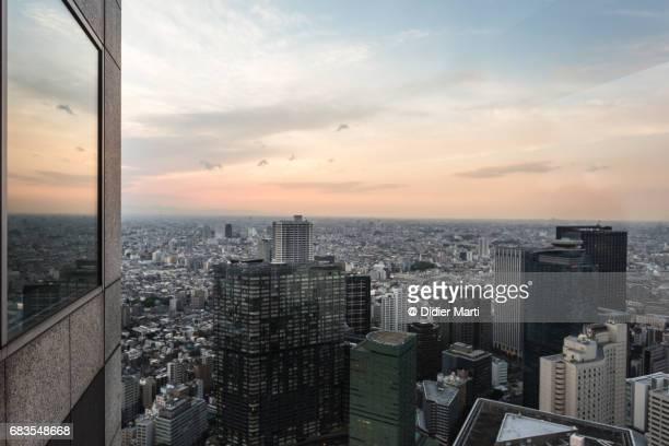 Sunset over Tokyo urban sprawl in Japan capital city.