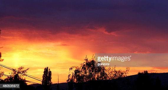 sunset : Stock Photo