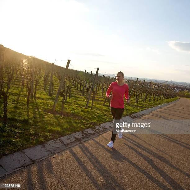 Sunset Run at vineyard