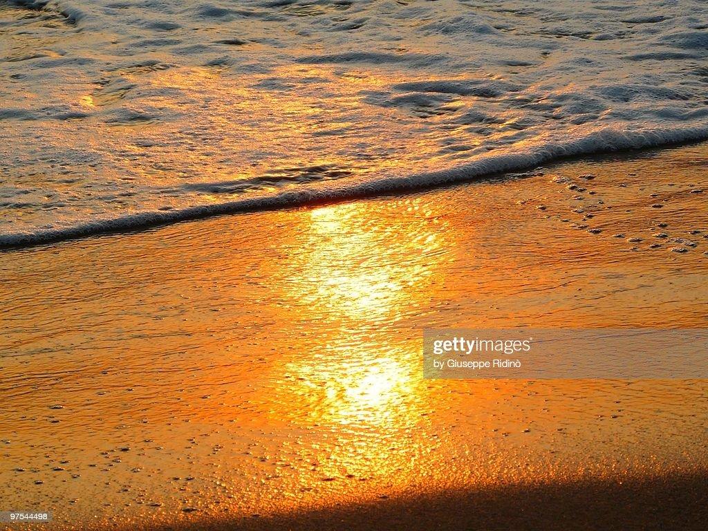 Sunset shore reflection : Stock Photo