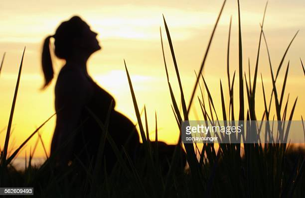 Sunset Silhouette of Pregnant Woman sitting amongst tall grass