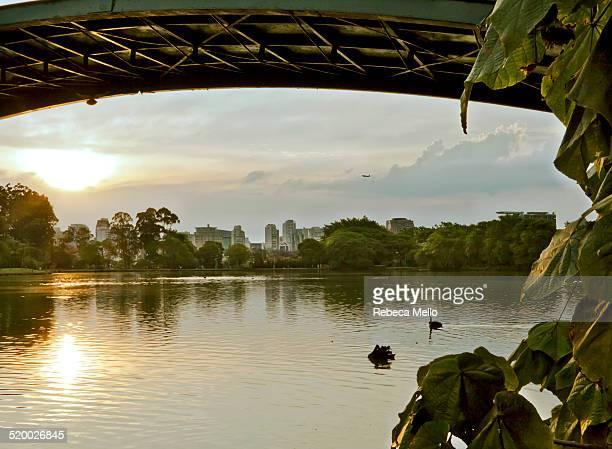 Sunset under the bridge, Ibirapuera Park