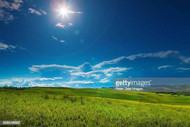 Sunshine in Tuscany, Italy