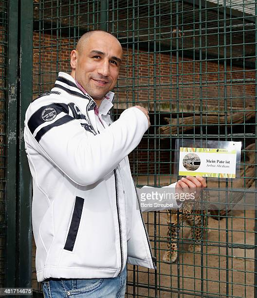 WBO super middleweight world champion Arthur Abraham adopts Shiva a baby persian leopard On the picture he poses with Erivan the mother of leopard...