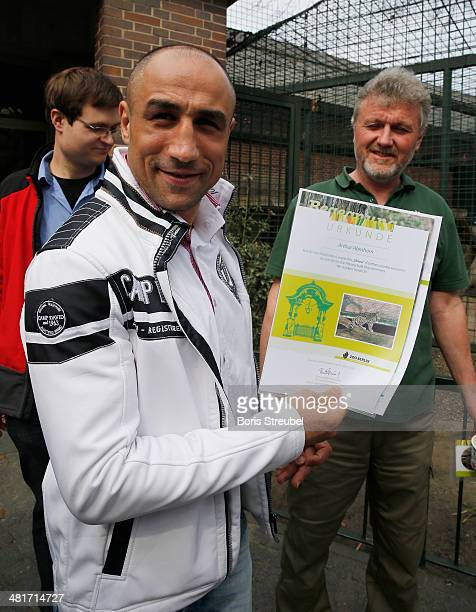 WBO super middleweight world champion Arthur Abraham adopts Shiva a baby persian leopard at Berlin Zoo's Lion House on March 31 2014 in Berlin Germany