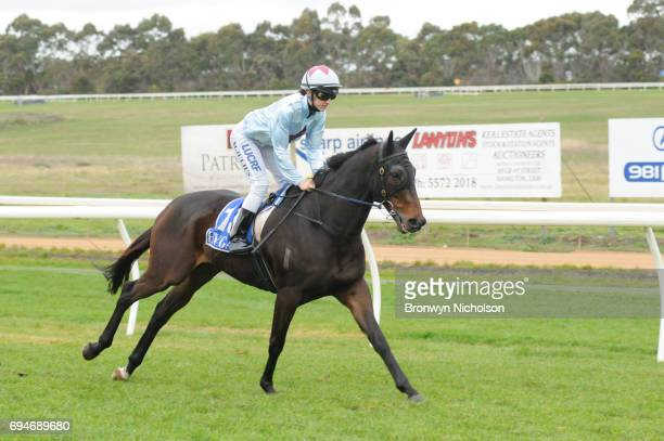 Super Mover ridden by Melissa Julius goes out for the Di Giorgio Family Wines Apsley Cup at Hamilton Racecourse on June 11 2017 in Hamilton Australia