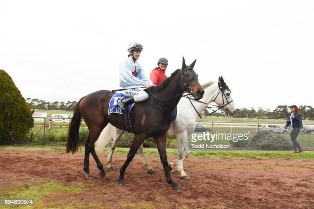 Super Mover ridden by Melissa Julius returns after the Di Giorgio Family Wines Apsley Cup at Hamilton Racecourse on June 11 2017 in Hamilton Australia