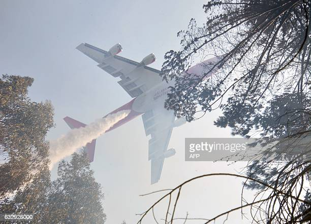 A super tanker Boeing 747400 firefighting plane helps in the effort to put out a forest fire in Concepcion Biobio region Chile on January 28 2017...