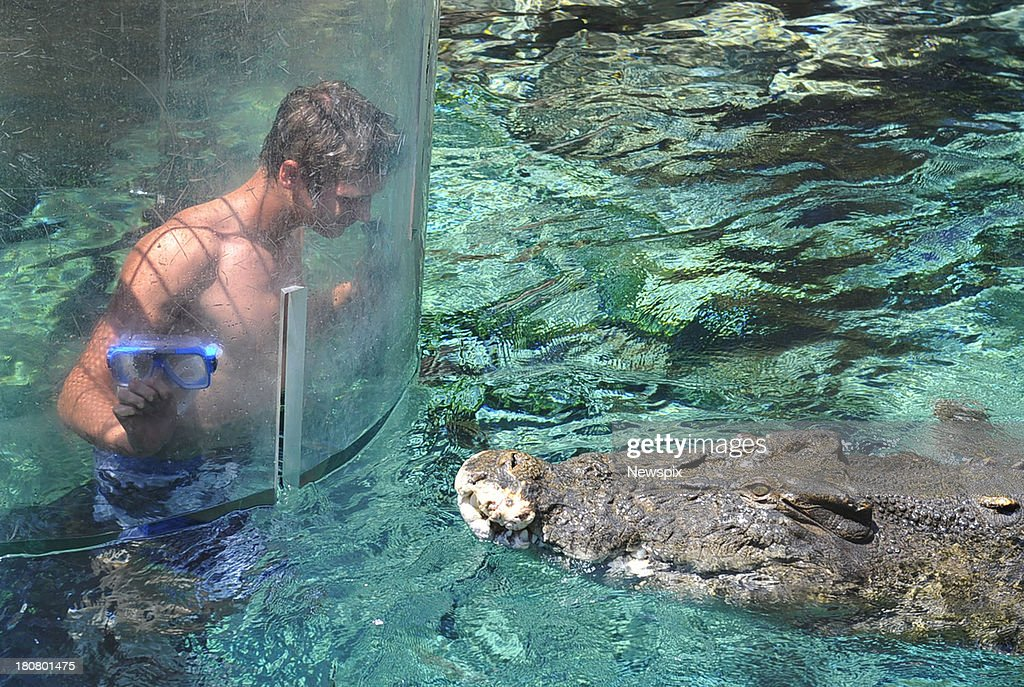 Supercross champion Gavin Faith faces 'Chopper' the crocodile in the Cage of Death at Crocosaurous Cove on September 12 2013 in Darwin Australia