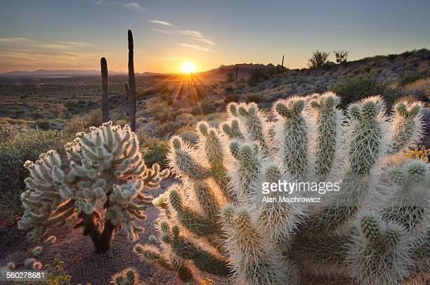 Superstition Mountains sunset,  Arizona