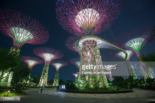 garden by the bay fireworks