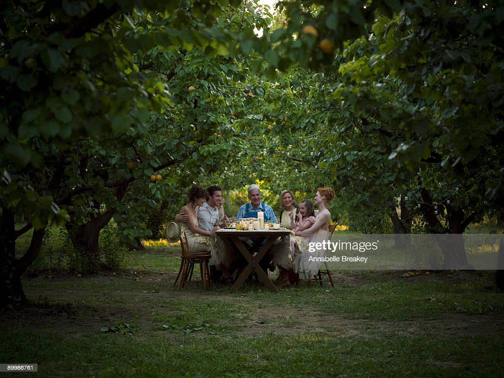 Supper Alfresco in orchard : Stock Photo