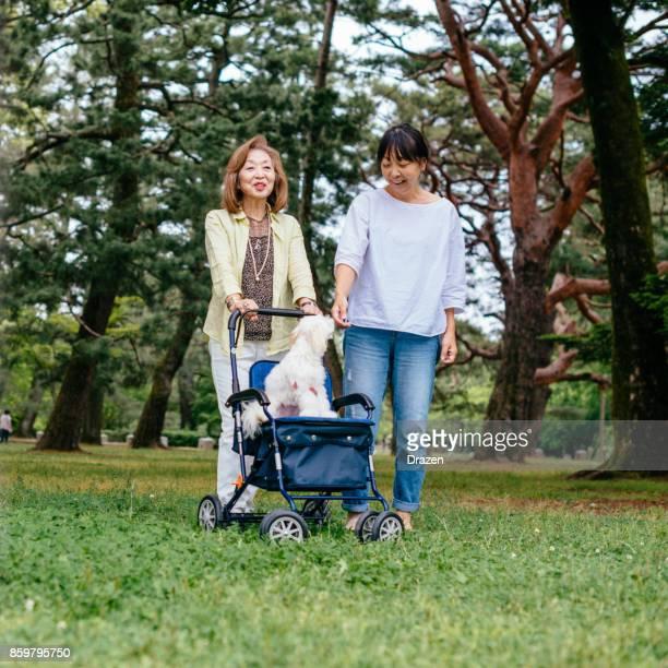 日本の年配の女性の人生の後半の段階で生活 Suppored