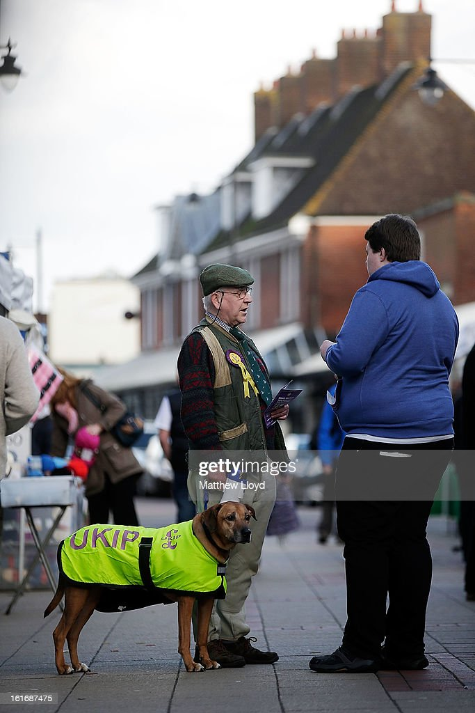 UKIP supporter Graham Harper and his dog Roque canvas for votes in the town centre on February 14, 2013 in Eastleigh, Hampshire. A by-election has been called in the constituency of Eastleigh after it's former MP, Chris Huhne, resigned after pleading guilty to perverting the course of justice over claims his ex-wife took speeding points for him in 2003.