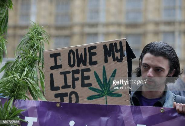 A supporter holding a placards promoting the use of cannabis as a medicine stands alongside a marijuana plant during a 'Tea Party' organised by the...