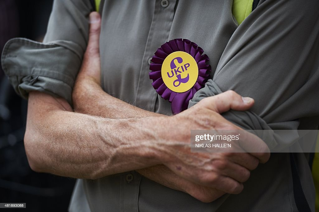 A supporter of the UK independence party converges outside the Houses of Parliament in a rally to demand electoral reform in central London on July 25, 2015. AFP PHOTO / NIKLAS HALLE'N