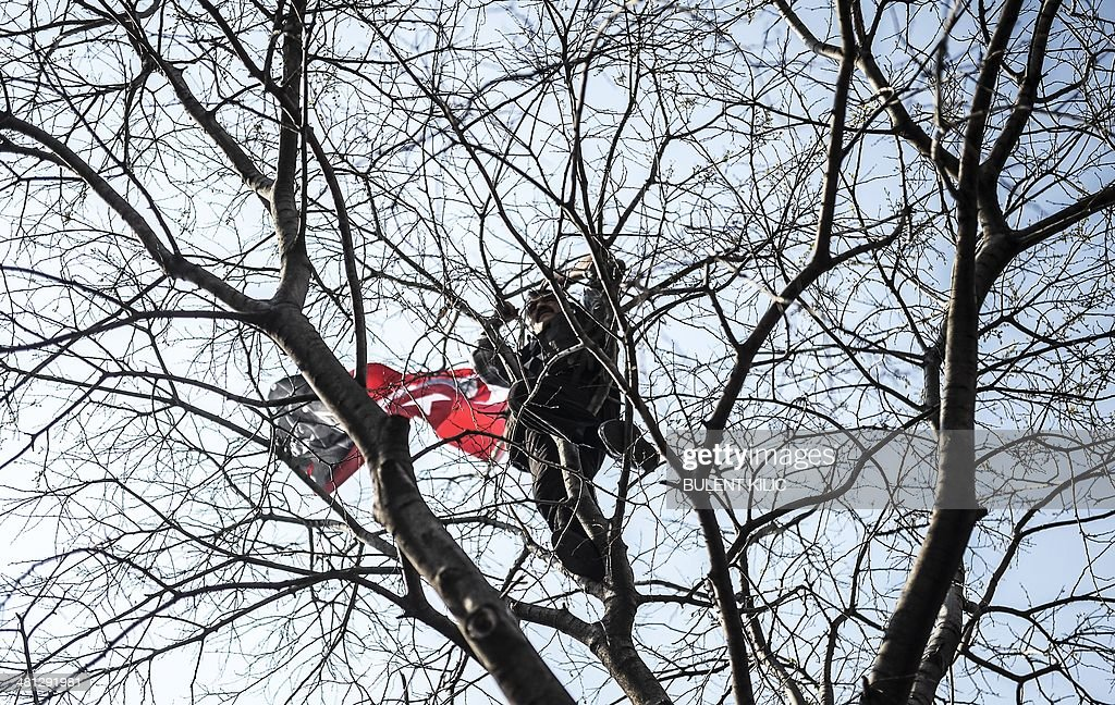 A supporter of Turkey's main opposition Republican People's Party (CHP) stands in a tree during an election rally at Kadikoy in Istanbul on March 29, 2014. Turkey gears up for local elections on March 30 ahead of a presidential vote in six months and parliamentary polls next year. Turkey's Premier Recep Tayyip Erdogan and his Islamic-leaning party, after over a decade in power, face the first electoral test following months of political turmoil, with mass street protests and a corruption scandal spread via Twitter, Facebook and YouTube. Amid an atmosphere of distrust ahead of tomorow's election with over 50 million eligible voters, the CHP and tens of thousands of citizen volunteers plan to monitor the ballot count. AFP PHOTO / BULENT KILIC